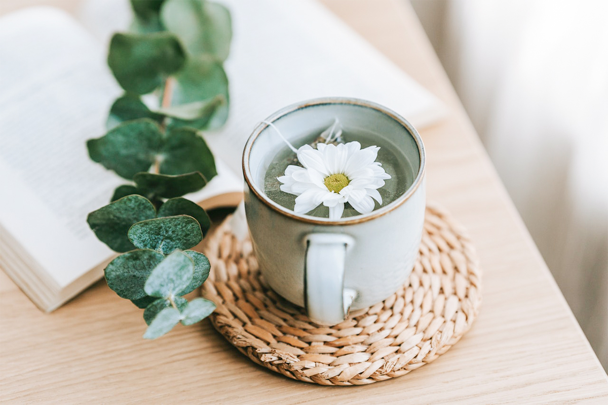 10 MYTHS ABOUT TEA THAT NEED TO UNCOVER