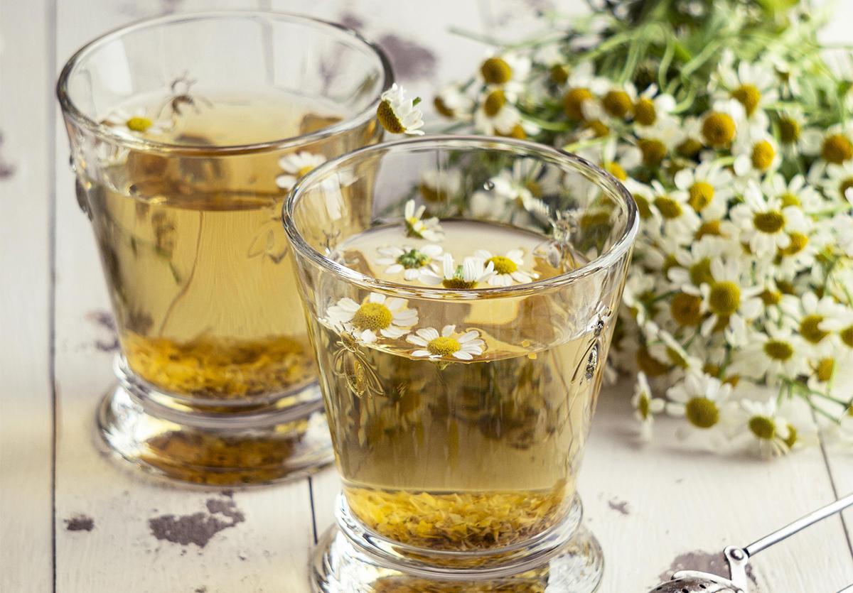 HISTORY OF CHAMOMILE TEA