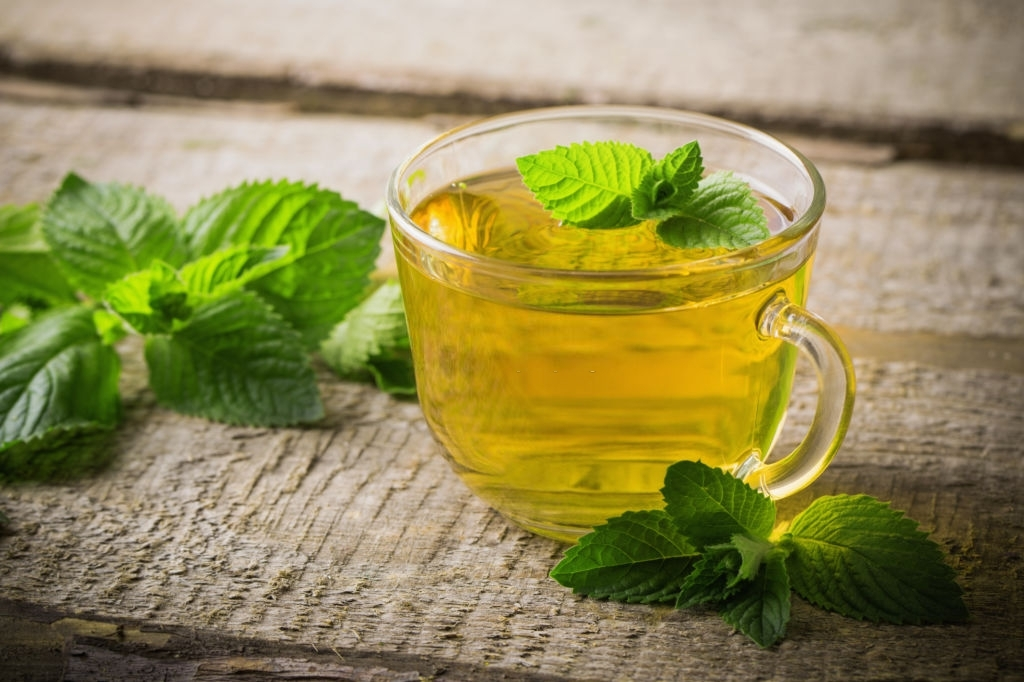 SPEARMINT HERBAL TEA GUIDE: MEANING, HISTORY, RECIPES